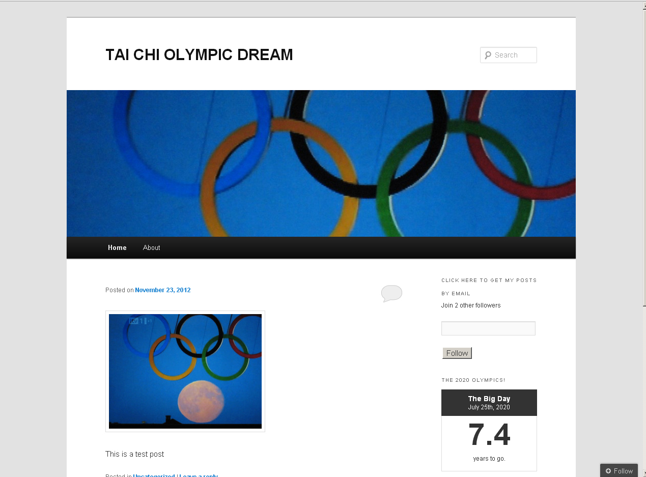 Tai chi Olympic Dream